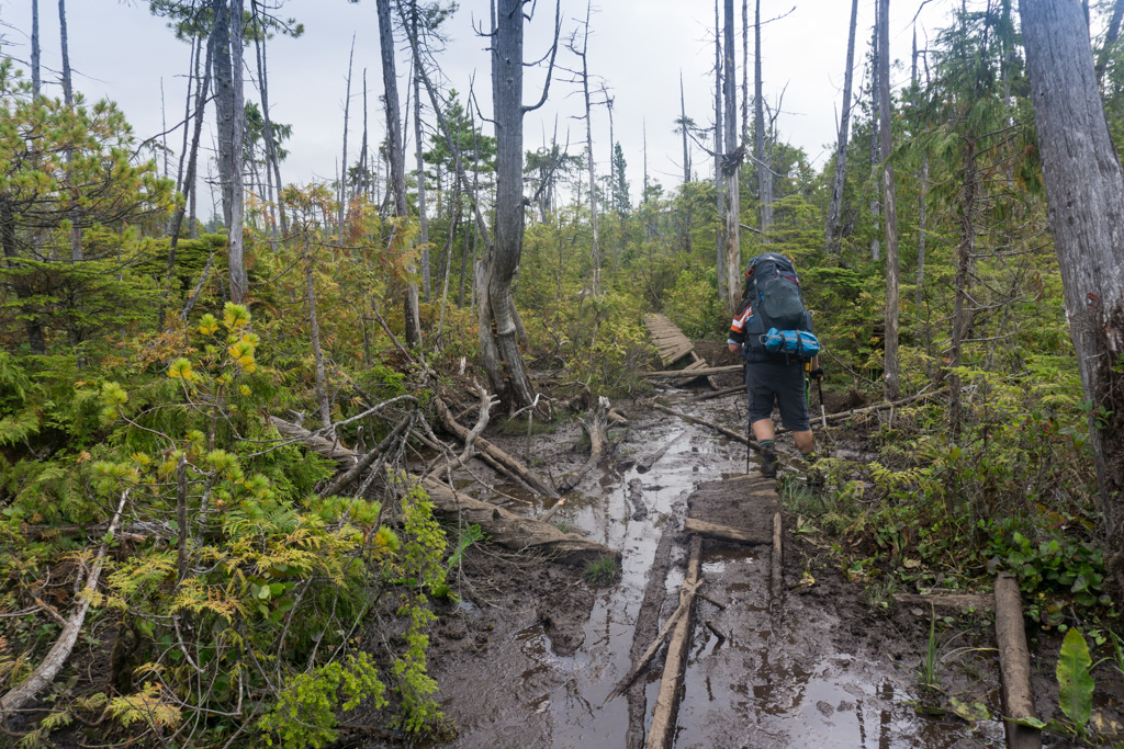 A hiker in a mud bog with ruined boardwalks. One of the most challenging West Coast Trail sections.