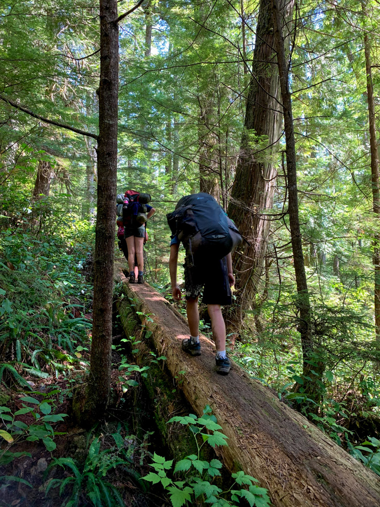 One of the log crossings on the West Coast Trail