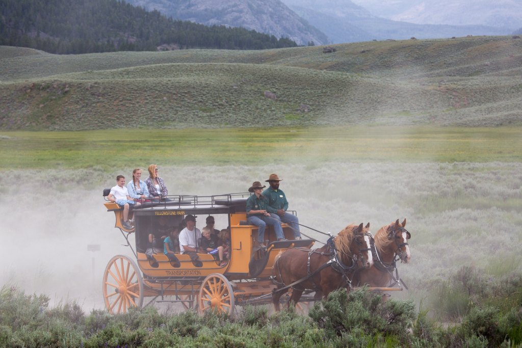 Stagecoach ride at Yellowstone