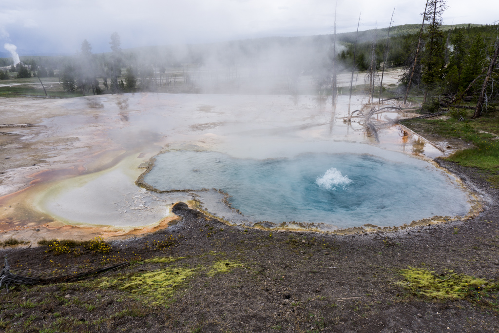 Hot spring on the Firehole Lake Drive in Yellowstone