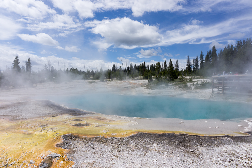 Hot springs in West Thumb Geyser Basin