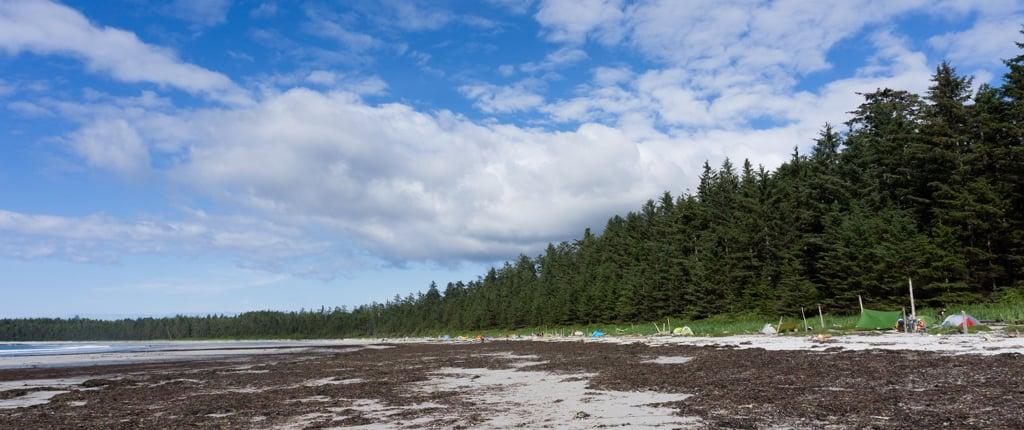Tents at Nel's Bight in Cape Scott Provincial Park