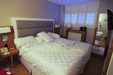 Bed bugs are often picked up in hotels and other holiday accommodation. Image