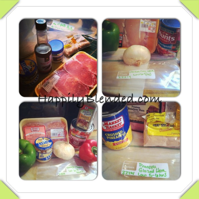 Testing out Frozen Crock Pot Meals