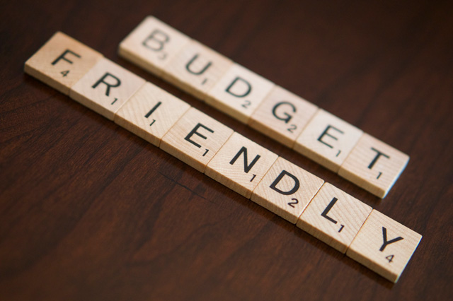 Choose a Budget-Friendly Plan