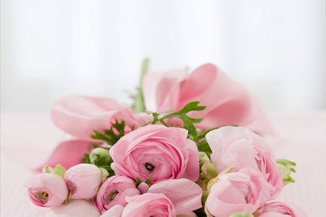 congratulate with flowers