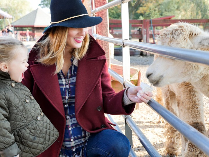 Eva Amurri Martino of lifestyle and motherhood blog Happily Eva After wears an oxblood wool coat, plaid maternity shirt, and navy felt hat as she feeds a llama with two year old daughter Marlowe