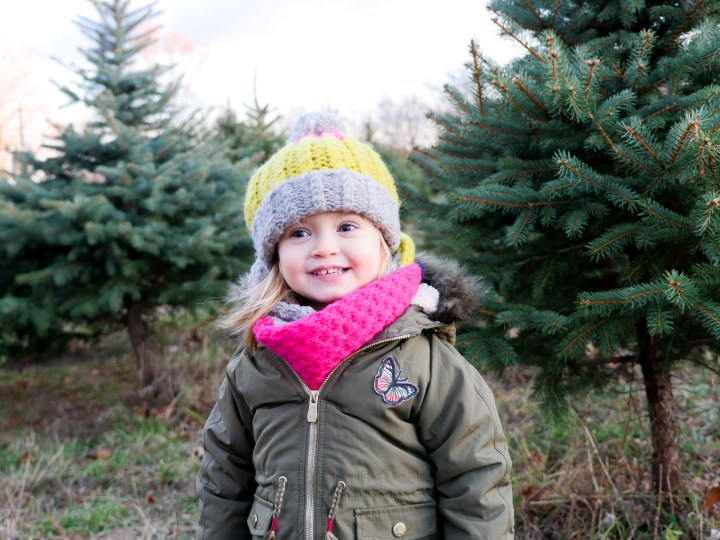 Marlowe Martino selects a Christmas Tree at a Christmas tree farm in Connecticut