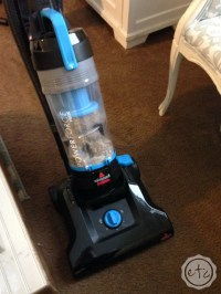 How to Clean Pet Stains out of Carpet with Bissell: Which ...