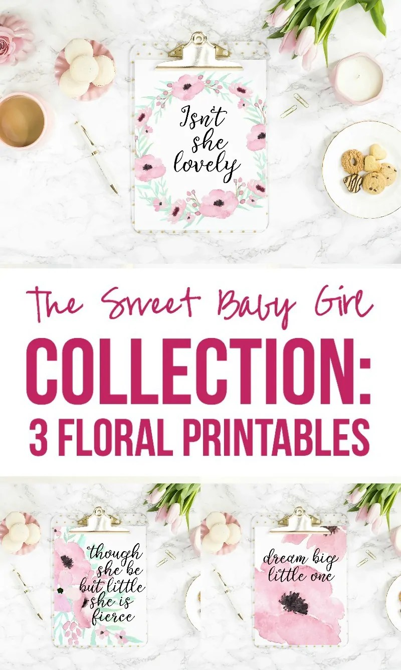 The Sweet Baby Girl Collection 3 Floral Printables