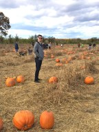 pumpkin-in-patch