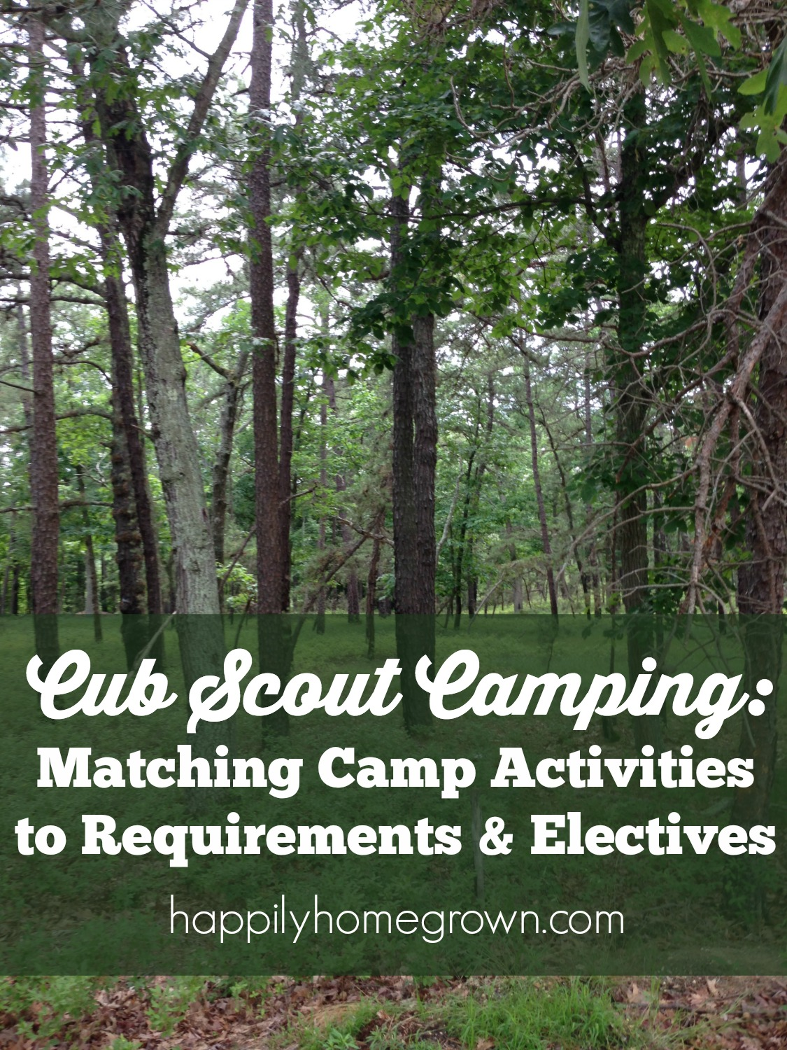 Camping Games Cub Scout