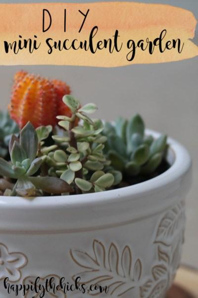 DIY Mini Succulent Garden | read more at happilythehicks.com