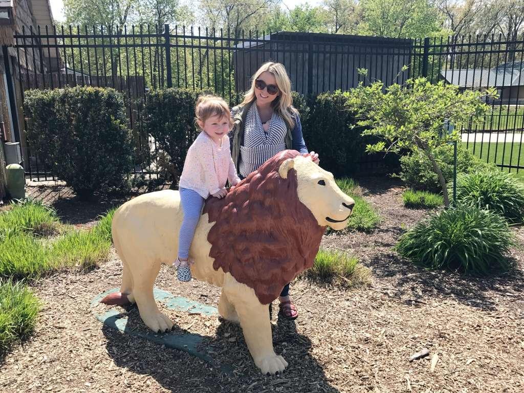 Visit to Zoo May 2017