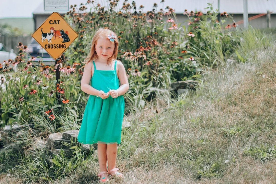 Miss Effie's Pick Your Own Flower Farm