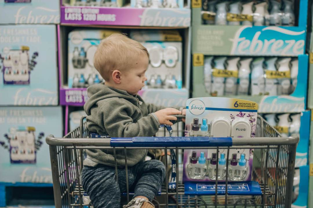 Febreeze Plugs Mediterranean Lavender at Sam's Club