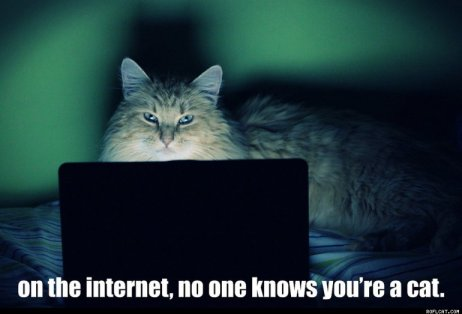 On_The_Internet_No_One_Knows_You_re_A_Cat