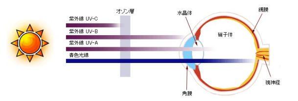 赤外線 ブルーライト 違い