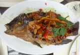 Fried Tilapia with Tamarind Sauce (L) - Php 250.00