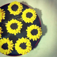 Edible sunflowers in the house!