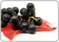 Superfood Maqui Berry