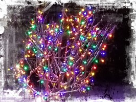 2019 Holiday Light front20191206_200509