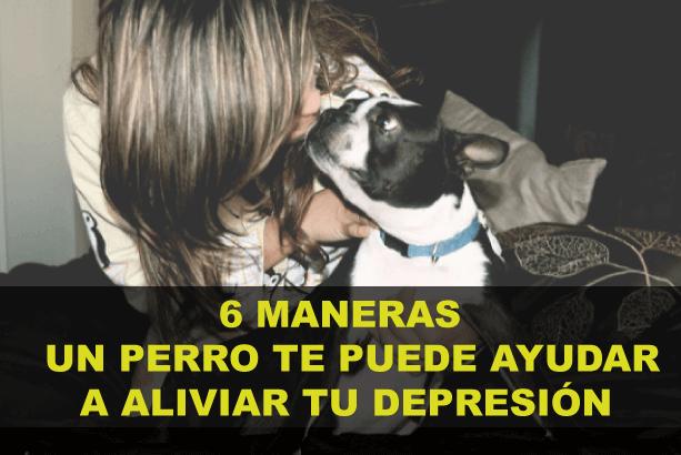 6-maneras-un-perro-aliviar-depresion