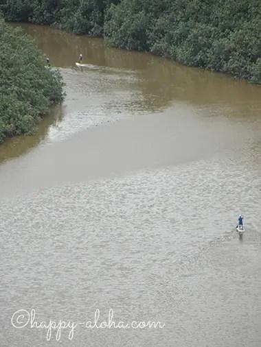 ワイルア川でパドック
