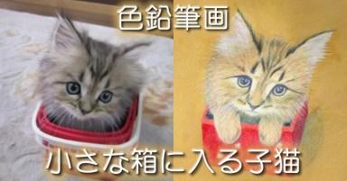 小さな赤い箱に入るレオン
