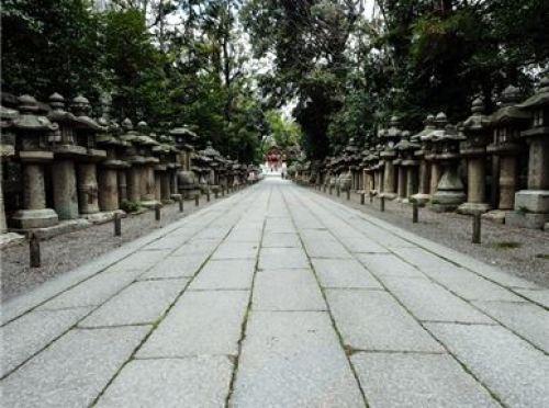 東京大神宮 参拝頻度