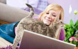 Das kleine Katzen-Quiz für Katzenfans