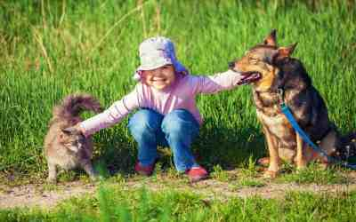 Haustierhaltung und Umweltschutz