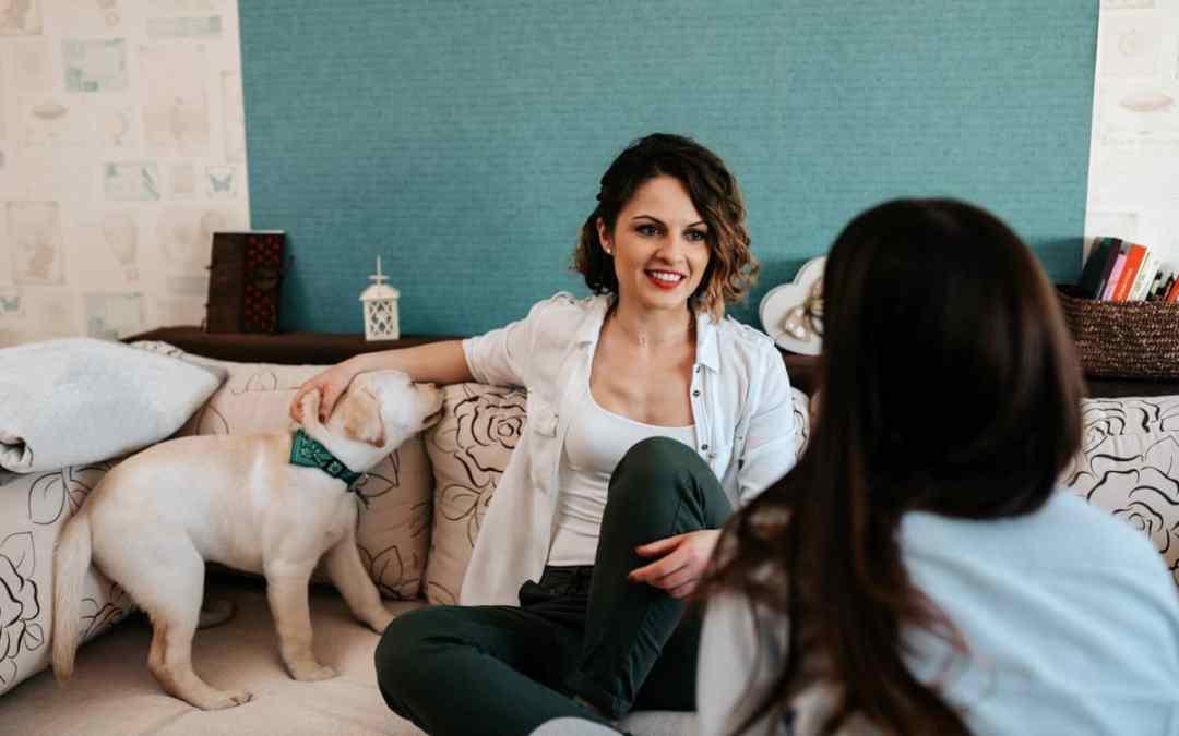 Auf die Couch beim Hundepsychologen
