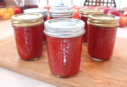 jars of homemade ketchup