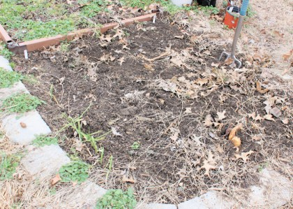 preparing bed for planting