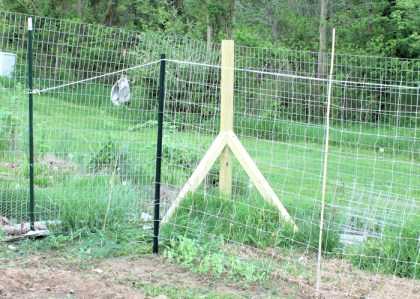 poly rope supports top of trellis