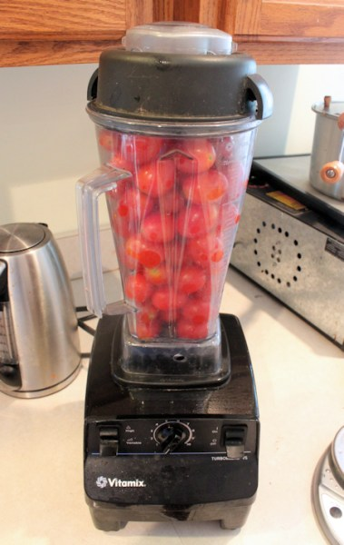 Vitamix full of tomatoes