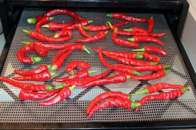 cayenne peppers in the dehydrator