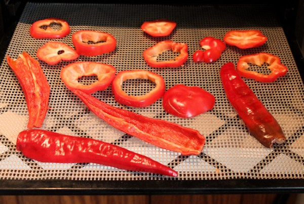 peppers ready for dehydrating