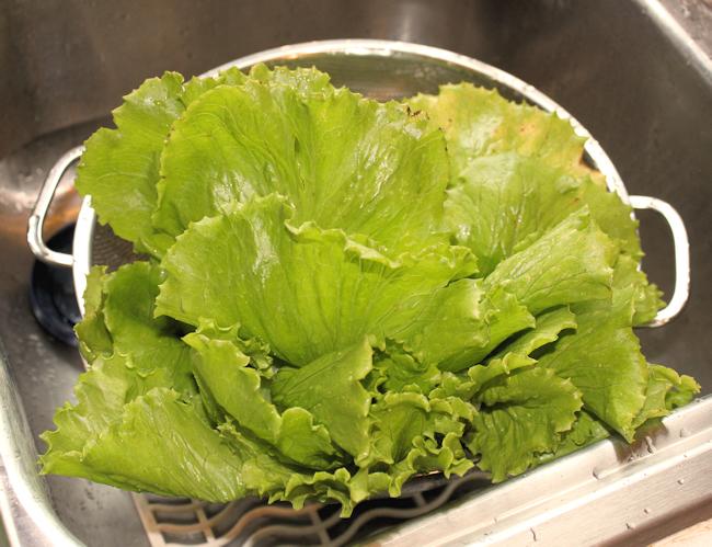 head of Sierra lettuce
