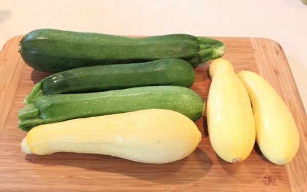 summer squashes from 2013