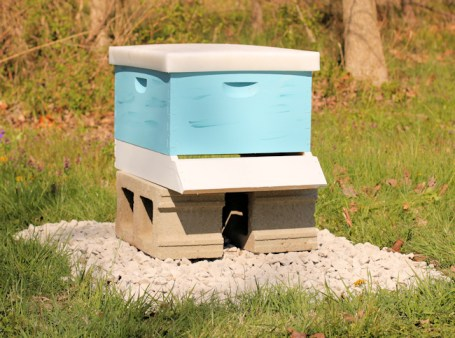 beehive ready for bees