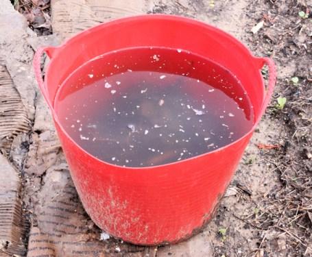 Tubtrug full of rain water