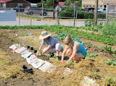 Becky and Maggie mulching the sweet potatoes