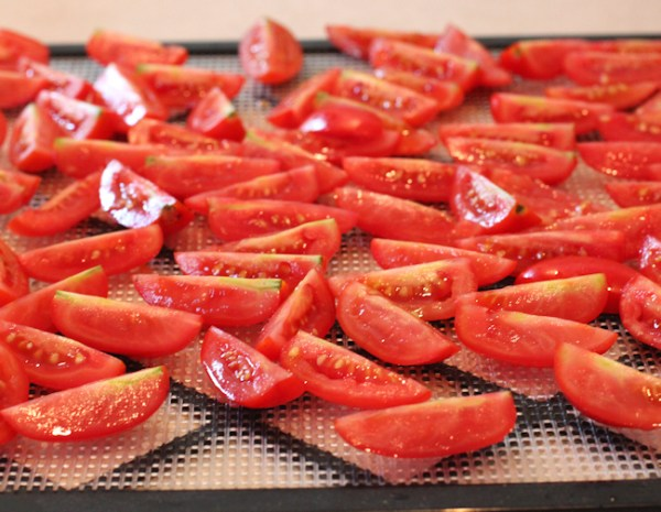 Juliet tomatoes ready for dehydrating.