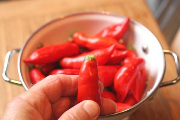 ripe Aji Angelo pepper with green cap