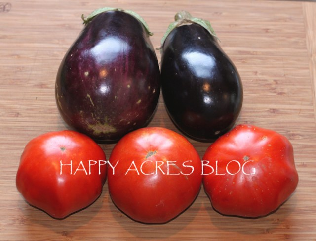 Italian eggplants with Vinson Watts tomatoes