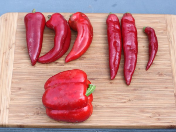paprika peppers and red bell pepper
