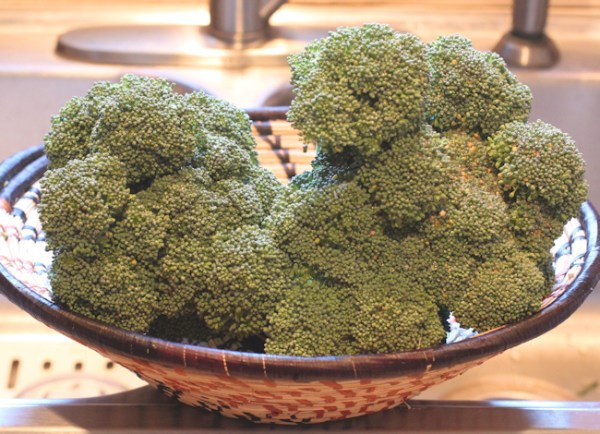 Diplomat broccoli