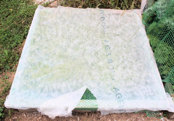 cold frame cover